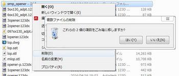 WSN001641.JPG